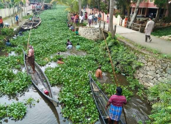 Allepy residents revive their scenic backwaters..